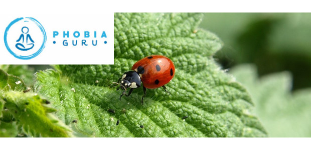 Introducing Phobia Guru Adam Michael Cox (www.phobiaguru.com) Phobias are so paralising GET YOUR PHOBIA DOWNLOAD HERE to help people get through their fear of insects (ENTOMOPHOBIA)! Psychologist and Hypnotherapist Adam […]