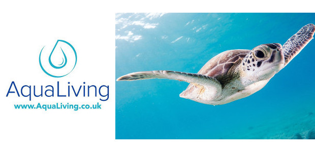 A Brand-New Water Lifestyle Store Sets Sail Online – AquaLiving.co.uk FACEBOOK | INSTAGRAM Aqua Living is a new one-stop-shop that's curated everything you and your family need to enjoy life […]