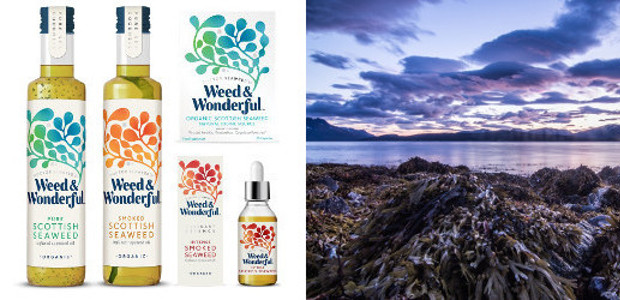 Seaweed for all the Family Introducing Doctor Seaweed's Weed & Wonderful www.seaweedandco.com FACEBOOK | TWITTER | GOOGLE+ | LINKEDIN Seaweed is increasingly recognised for its unrivalled potential by health and […]