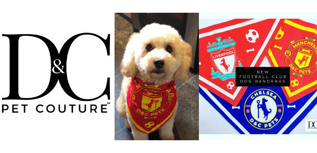 Awesome!! Check Out these Adorable Little Fashion Items For Your Lovable Pets & Animals! They're so lovely! www.dcpetcouture.com INSTAGRAM   FACEBOOK   TWITTER Exclusive Designer Clothing & Accessories for Dogs […]