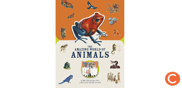 THE AMAZING WORLD OF ANIMALS… by Author Moira Butterfield! (£12.99) Meet the world's most amazing animals & press-out pages into wildlife works of art! Part of the Paperscapes Series! […]