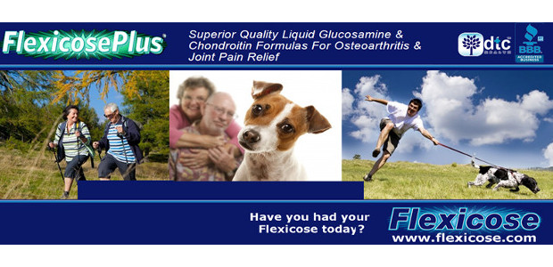 "Fast Absorbing Liquid Glucosamine – Safe, Effective Joint Pain Relief for People & Pets! www.flexicose.com ""A superb product, it worked for me!"" InTouch Rugby Curator! CODE > ""RUGBY10"" for 10% […]"