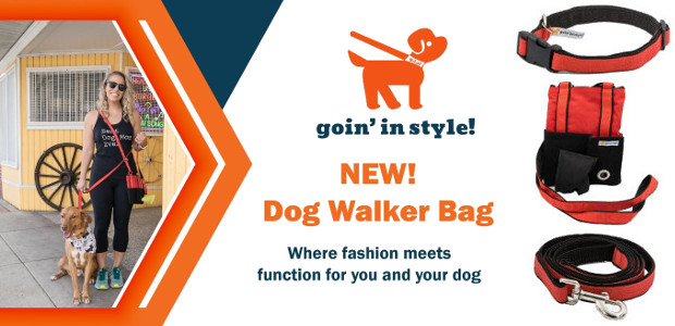 Goin' In Style – Christmas gift for dog owners/pet sitters www.goininstyle.com TWITTER   FACEBOOK   INSTAGRAM My name is Joyce Smythe and my company, Goin' In Style is based in […]
