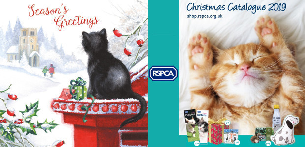 12 gifts of Christmas help animals in need Gifts for all the family in the RSPCA catalogue and online shop Whether treating your furry friends to some festive gifts or […]