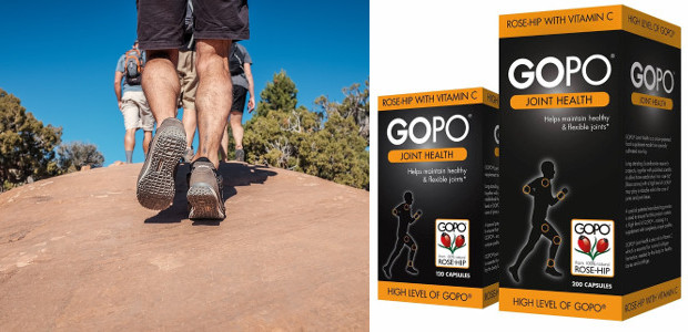 GOPO® Joint Health www.gopo.co.uk TWITTER | FACEBOOK GOPO® is a key compound derived from rose-hips. Clinical trials suggest the galactolipid compound GOPO®: · Reduces joint pain by 64% · Contains […]