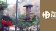 Henry Bell Wild Bird Care is the perfect gift for anyone who loves feeding the birds. www.henrybell.co.uk FACEBOOK | TWITTER THE PERFECT GIFT FOR THOSE WHO LIVE BIRDS 1) The […]