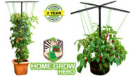 """FAT TOMATO –just launched on US amazon via homegrowhero.com www.amazon.com/TOMATO-Trellis-Vertical-Garden FAT TOMATO Trellis Vertical Garden Kit. 6 ft Tall, 22"""" Round, 30 Clips, String: Support Bush + Vine Vegetables. More […]"""
