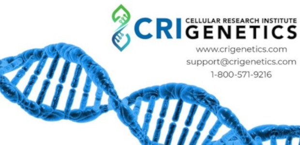 Know someone who is interested in an ancestry report or health report from DNA: Could this inspire them or even save their life? www.crigenetics.com Cellular Research Institute Genetics Provide A […]